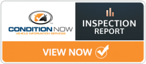 Inspection Report Button