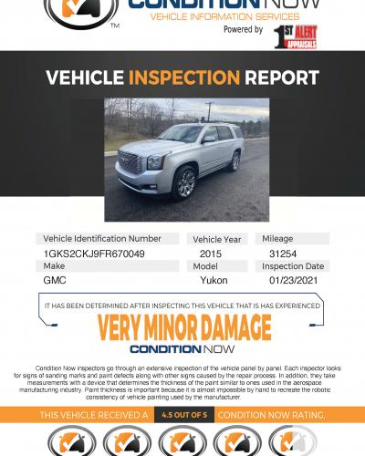 Platinum Report Example